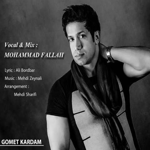 دانلود آهنگ محمد فلاح به نام گمت کردم