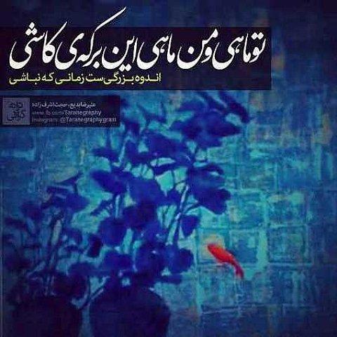دانلود آهنگ جدید حجت اشرف زاده بنام ماه و ماهی