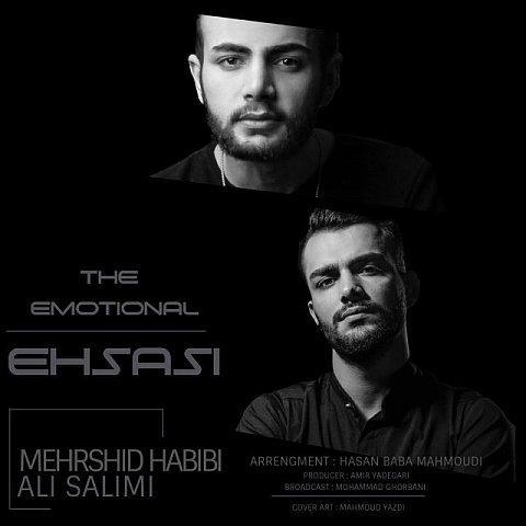 دانلود آهنگ جدید مهرشید حبیبی و علی سلیمی به نام احساسی