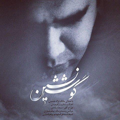 دانلود آهنگ جدید مالک نژاد حسینی به نام گوشه نشین