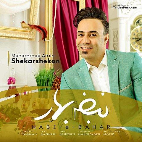دانلود آهنگ جدید محمد امین شکرشکن به نام نبض بهار