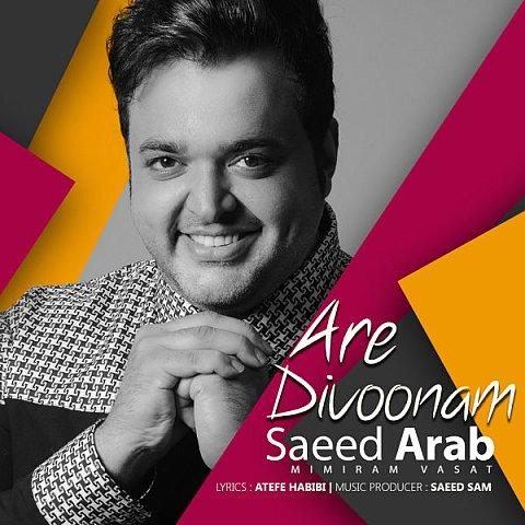دانلود آهنگ سعید عرب به نام آره دیوونم