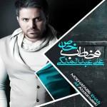 دانلود آلبوم جديد علی عبدالمالکی به نام مخاطب خاص