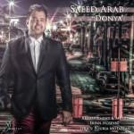 دانلود آهنگ جديد سعید عرب به نام دنیا
