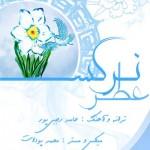 دانلود آهنگ حامد رجبی پور به نام عطر نرگس