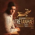 دانلود آهنگ محمد حسین نژاد به نام عطر تنهایی