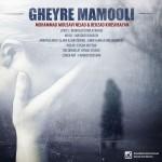 دانلود آهنگ محمد موسوی نژاد و بهزاد خوش بیان به نام غیر معمولی