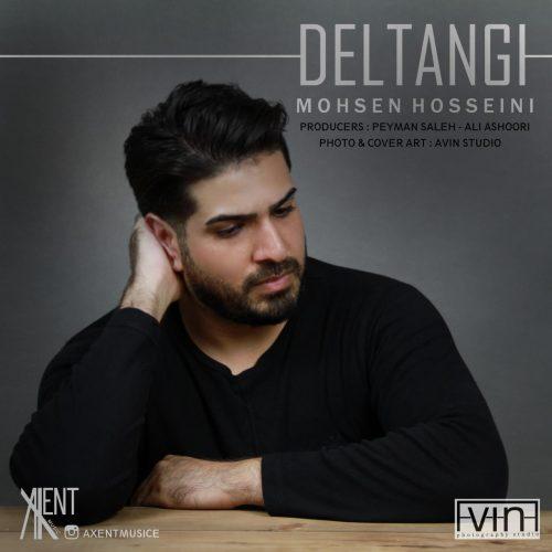 دانلود آهنگ جدید محسن حسینی دلتنگی