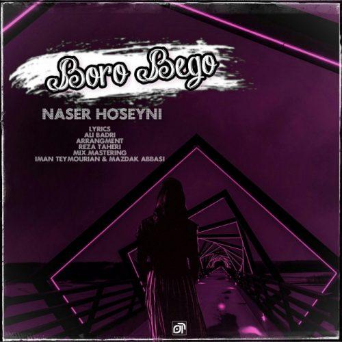 دانلود آهنگ جدید ناصر حسینی برو بگو