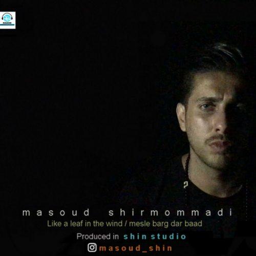 دانلود آهنگ مسعود شیرمحمدی  به نام مثل برگ در باد