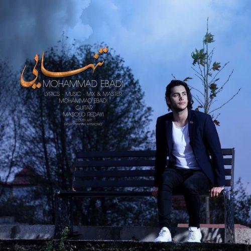 دانلود آهنگ جدید محمد عبادی تنهایی