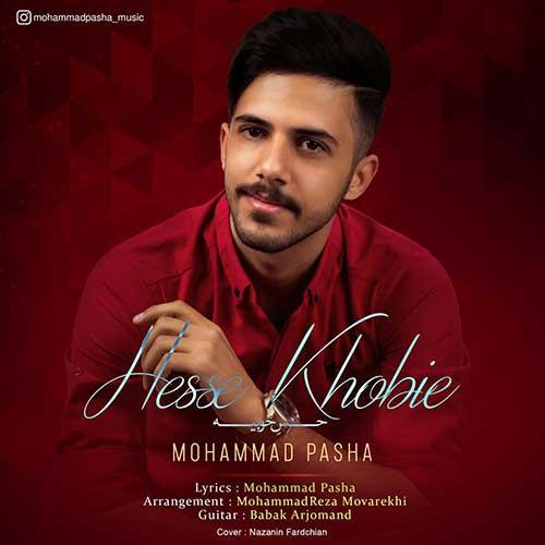 دانلود آهنگ جدید محمد پاشا حس خوبیه