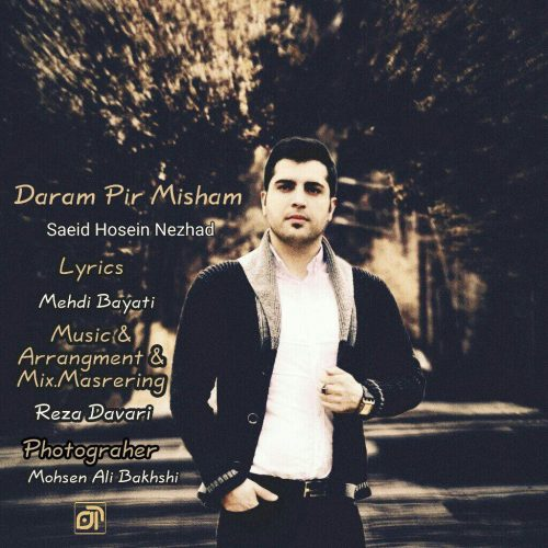 دانلود آهنگ جدید سعید حسین نژاد دارم پیر میشم