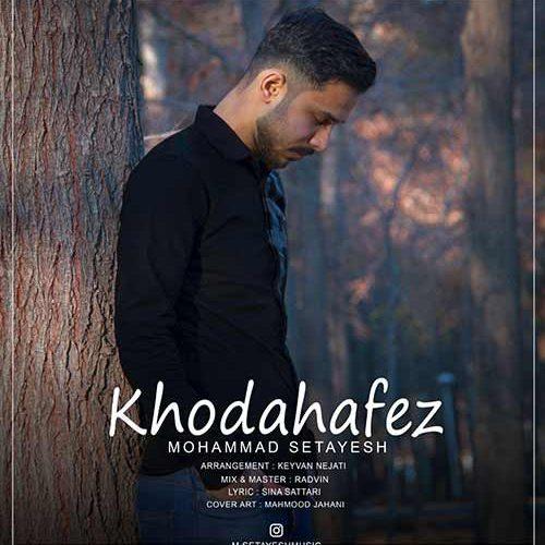 دانلود آهنگ جدید محمد ستایش خداحافظ