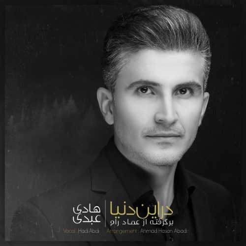 دانلود آهنگ جدید هادی عبدی در این دنیا