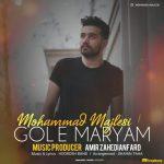 دانلود آهنگ محمد مجلسی به نام گل مریم