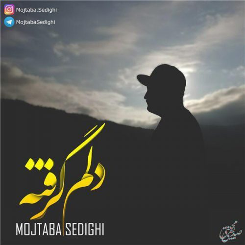 دانلود آهنگ مجتبی صدیقی  به نام دلم گرفته
