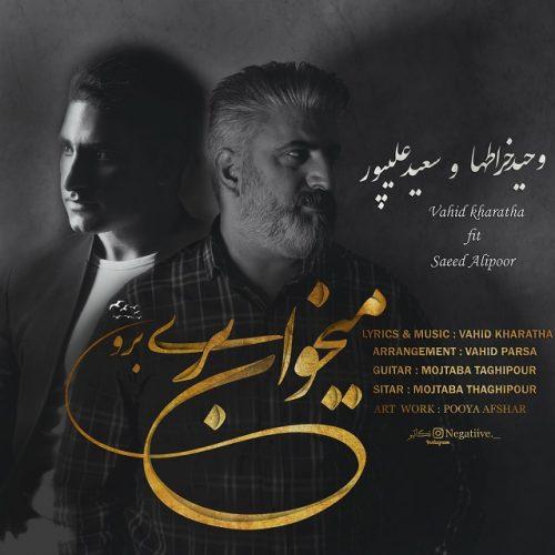 دانلود آهنگ وحید خراطها و سعید علیپور به نام میخوای بری برو