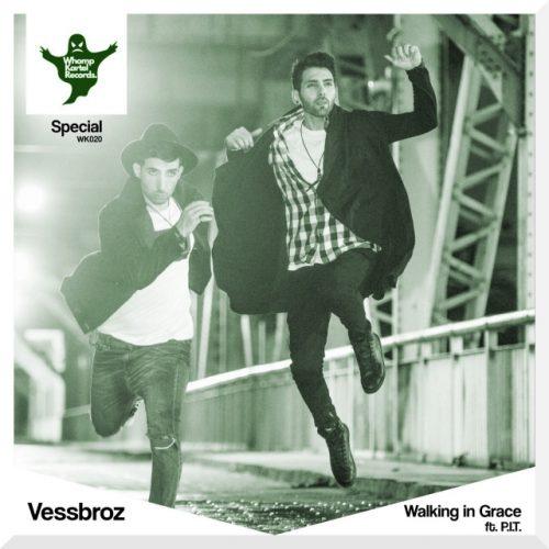 دانلود آهنگ جدید Vessbroz Walking In Grace