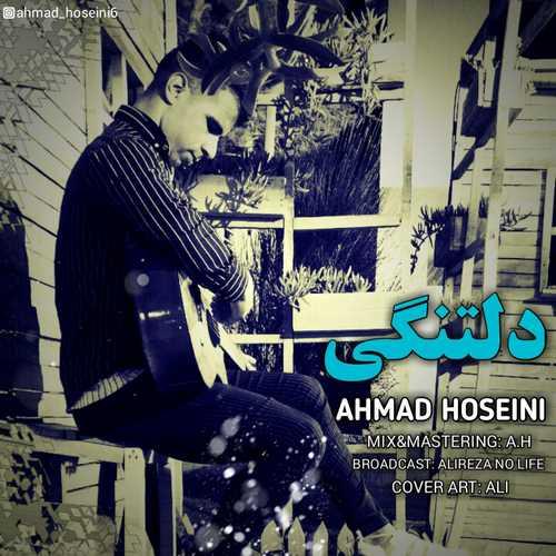 دانلود آهنگ احمد حسینی به نام دلتنگی