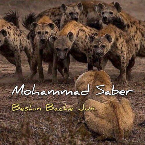 دانلود آهنگ جدید محمد صابر بشین بچه جون