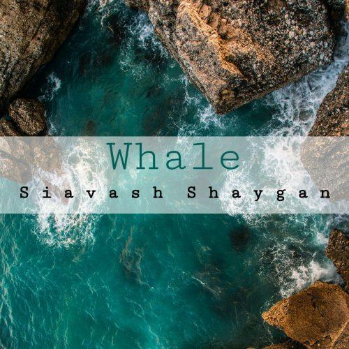 دانلود آهنگ سیاوش شایان به نام نهنگ