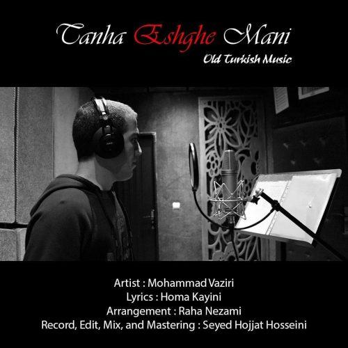 دانلود آهنگ محمد وزیری به نام تنها عشق منی
