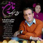 دانلود آهنگ محمد علی امیدی به نام نازنین