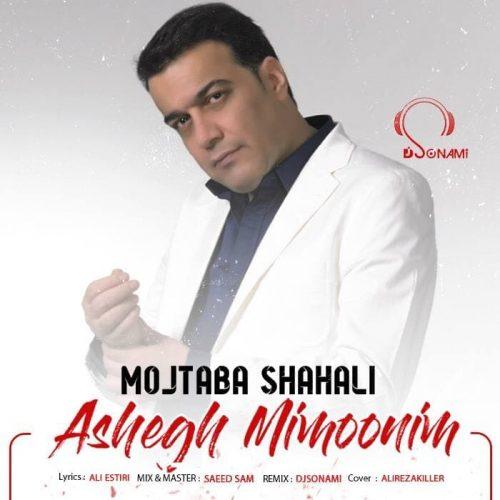 دانلود آهنگ جدید مجتبی شاه علی عاشق میمونیم (ریمیکس دیجی سونامی)