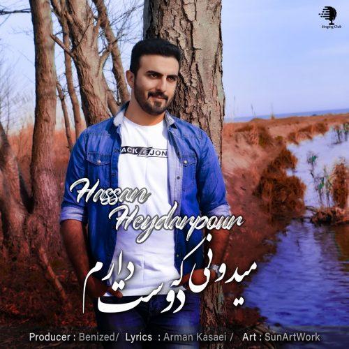 دانلود آهنگ جدید حسن حیدرپور میدونی که دوست دارم