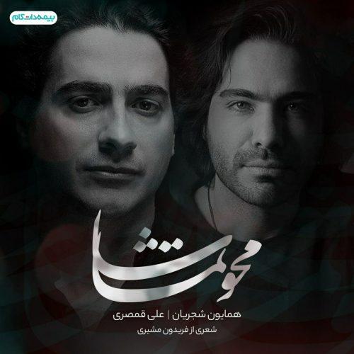 دانلود آهنگ جدید همایون شجریان و علی قمصری محو تماشا