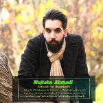 دانلود آهنگ مجتبی احمدی به نام شال و کلاه
