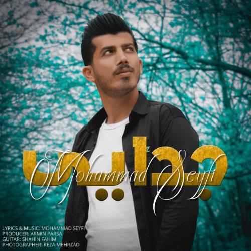 دانلود آهنگ جدید محمد سیفی جدایی