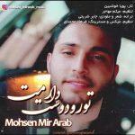 دانلود آهنگ محسن میر عرب به نام تو رو دوست دارمت