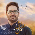 دانلود آهنگ صالح کاویانی به نام دلیل عشق