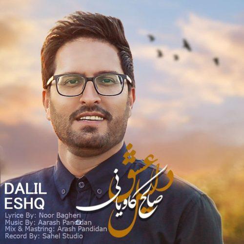دانلود آهنگ جدید صالح کاویانی دلیل عشق
