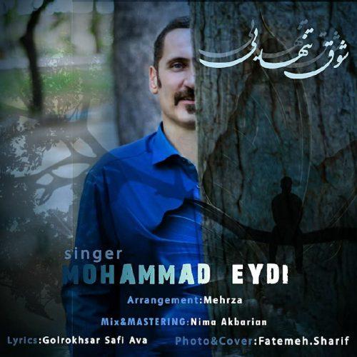دانلود آهنگ جدید محمد عیدی  شوق تنهایی